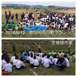 IMG_20160612-酒匂川河川敷グランド芝補植_1